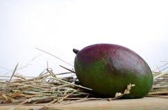 Il mango sta trovandosi su un bordo di legno in un mucchio di fieno Fotografia Stock Libera da Diritti