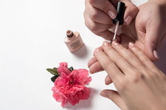 Il manicure dipinge i chiodi ad un cliente Immagine Stock Libera da Diritti