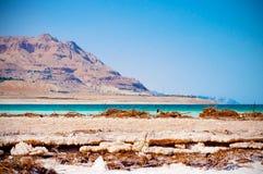 Il mar Morto Immagine Stock Libera da Diritti