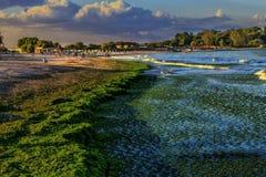 Il Mar Nero a Neptun Romania su un pomeriggio adorabile Immagini Stock Libere da Diritti