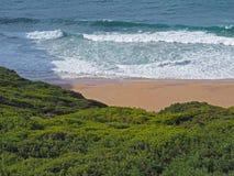 Il mare blu ondeggia su una spiaggia di sabbia con vegetazione verde fresca immagine stock libera da diritti