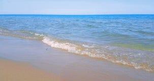 Il mare caraibico tropicale della spiaggia con la sabbia dell'oro, la festa sotto cielo blu e l'oceano, si rilassano e viaggiano  video d archivio