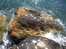 Il mare di Brown oscilla sulla spiaggia e sull'onda brillante di scintillio fotografia stock libera da diritti