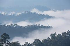 Il mare di nebbia Fotografia Stock Libera da Diritti