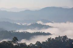 Il mare di nebbia Immagine Stock