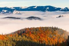 Il mare di nebbia con le foreste come priorità alta Fotografie Stock Libere da Diritti
