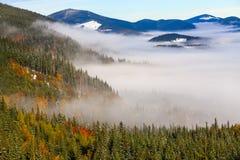 Il mare di nebbia con le foreste come priorità alta Immagine Stock Libera da Diritti