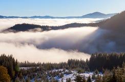 Il mare di nebbia con le foreste come priorità alta Fotografia Stock Libera da Diritti