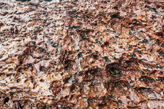 Il mare lapida il fondo Fotografia Stock Libera da Diritti