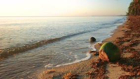Il mare ondeggia il funzionamento sopra alla spiaggia stock footage