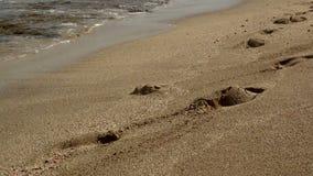 Il mare ondeggia sopra la spiaggia di sabbia archivi video
