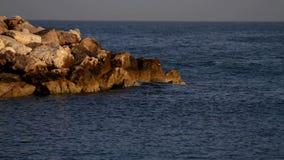 Il mare ondeggia sulla roccia video d archivio