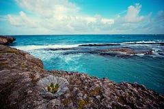Il mare, rocce, scogliere, spruzza ed oscilla immagini stock libere da diritti