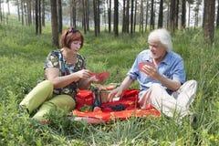 Il marito e la moglie anziani hanno avuti un picnic nel legno Immagini Stock Libere da Diritti