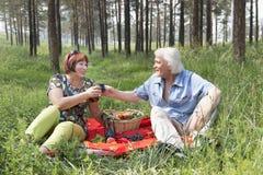 Il marito e la moglie anziani hanno avuti un picnic nel legno Fotografie Stock Libere da Diritti