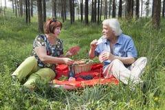 Il marito e la moglie anziani hanno avuti un picnic nel legno Fotografia Stock