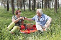 Il marito e la moglie anziani hanno avuti un picnic nel legno Immagini Stock