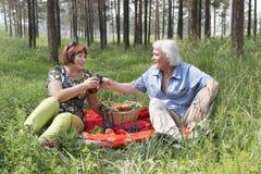 Il marito e la moglie anziani hanno avuti un picnic nel legno Immagine Stock Libera da Diritti
