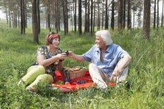 Il marito e la moglie anziani hanno avuti un picnic nel legno Fotografia Stock Libera da Diritti
