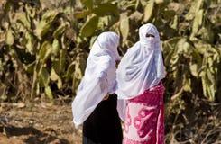 Il Marocco Immagini Stock Libere da Diritti