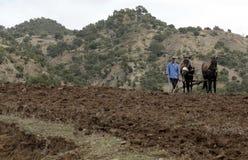 Il Marocco pastorale Fotografia Stock Libera da Diritti