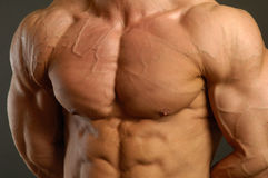 Il maschio muscolare Fotografia Stock Libera da Diritti