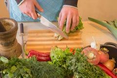 Il ` maschio s passa la cottura del pasto sano nella cucina, dietro gli ortaggi freschi Alimento sano Immagine potata delle verdu Fotografia Stock Libera da Diritti