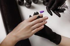 Il Master del manicure in guanti neri, prende con la tavolozza del cliente, preparazione per l'applicazione del polacco del gel fotografia stock libera da diritti
