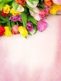 Il mazzo dei tulipani fiorisce su un'annata del fondo del disegno retro Fotografie Stock