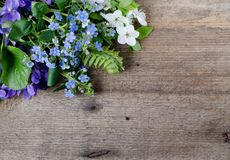 Il mazzo della primavera con le viole ed il nontiscordardime fiorisce su un fondo di legno con spazio per testo Fotografia Stock