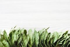 Il mazzo di baia va su fondo di legno bianco Fotografie Stock