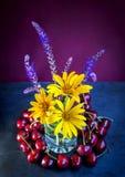 Il mazzo di bella estate fresca gialla e blu fiorisce Fotografia Stock Libera da Diritti