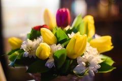 Il mazzo di bella molla fiorisce nell'interno, fine su, per le donne al giorno del ` s del biglietto di S. Valentino Immagine Stock