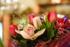 Il mazzo di bella molla fiorisce nell'interno, fine su, per le donne al giorno del ` s del biglietto di S. Valentino Immagini Stock Libere da Diritti