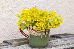Il mazzo di belle primaverine selvatiche fiorisce in una tazza d'annata dell'argilla Immagini Stock