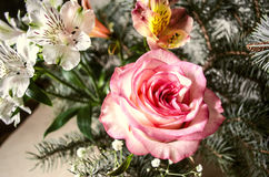 Il mazzo di giallo-rosa è aumentato con i Alstroemerias ed i ramoscelli dell'abete bianco Fotografia Stock