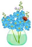 Il mazzo di nontiscordardime fiorisce in un vaso di vetro. Ladybird. Fotografie Stock Libere da Diritti