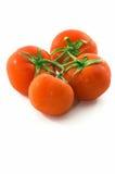Il mazzo di pomodori, verticale, spazia in basso fotografia stock