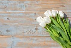 Il mazzo di tulipani bianchi in una fila su un grey blu ha annodato il vecchio fondo di legno con la disposizione vuota dello spa Fotografie Stock