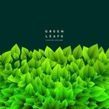 Il mazzo di verde copre di foglie fondo della natura di eco illustrazione vettoriale