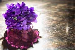 Il mazzo di viole ha riflesso su un vecchio specchio Immagini Stock