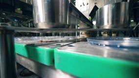 Il meccanismo industriale sta versando le briciole di pane nei contenitori Attrezzatura della fabbrica dell'alimento stock footage