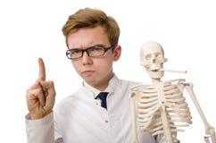 Il medico divertente con lo scheletro su bianco Immagini Stock Libere da Diritti