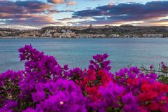 Il-Mellieha, Malta - Beautiful sunset at Mellieha beach with flowers. And colorful sky Stock Photography