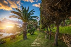 Il-Mellieha, Malta - Beautiful sunset scene at Mellieha town with palm trees. And colorful sky Stock Photo