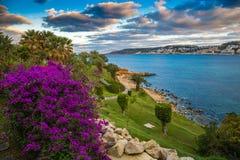 IL-Mellieha, Malta - flores hermosas y una escena de la puesta del sol con la ciudad de Mellieha, las palmeras y el cielo colorid Foto de archivo