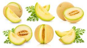 Il melone fruttifica raccolta fotografia stock