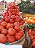 Il mercato locale dell'agricoltore Fotografia Stock Libera da Diritti