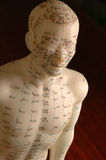 Il meridiano di agopuntura allinea la figurina del manichino di addestramento immagine stock libera da diritti