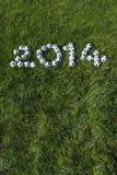 Il messaggio per 2014 ha fatto con i palloni da calcio di calcio su erba Fotografia Stock